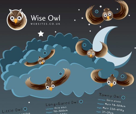 Wise Owl Websites