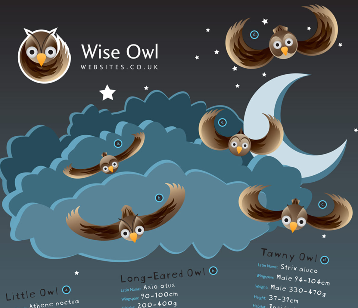 Graphic Design and Illustration for Wise Owl Websites.